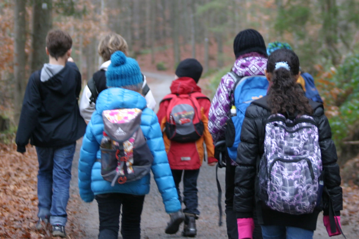 Schulklasse geht Waldweg entlang