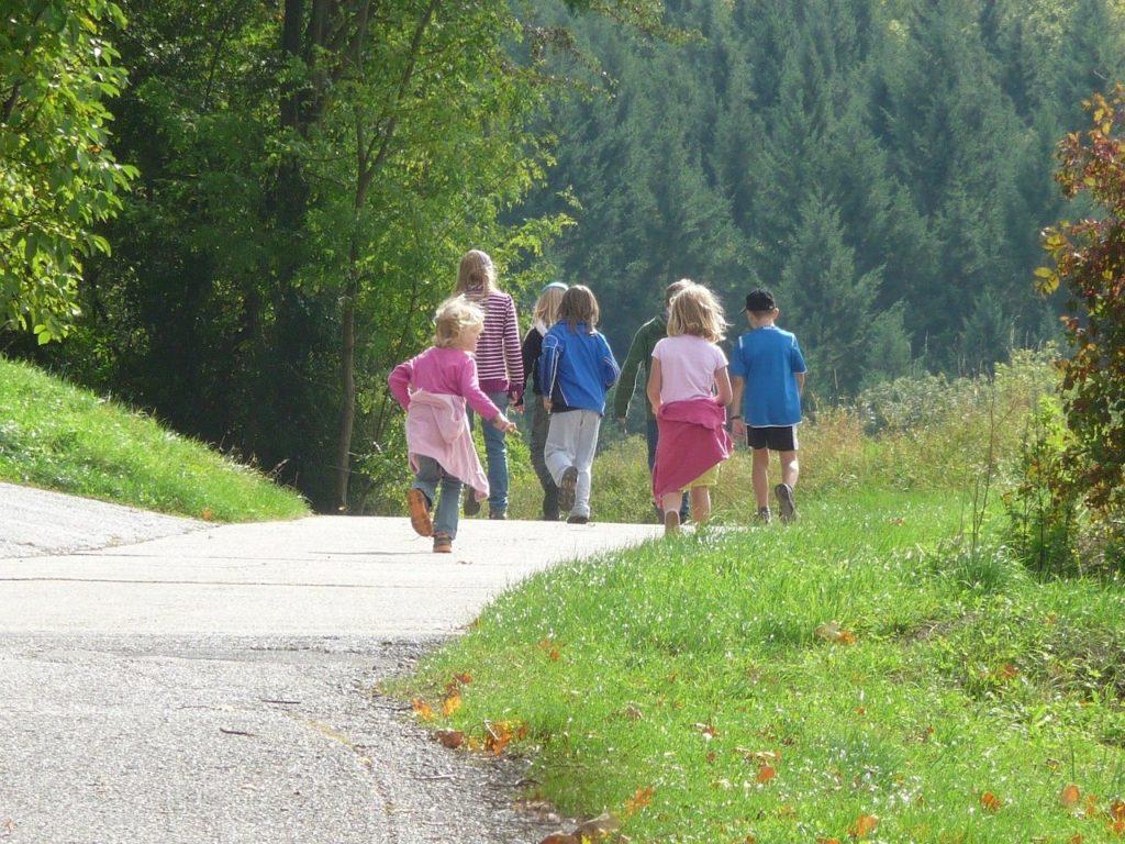 Zwei Erwachsene und fünf Kinder laufen auf einem Weg Richtung Wald.