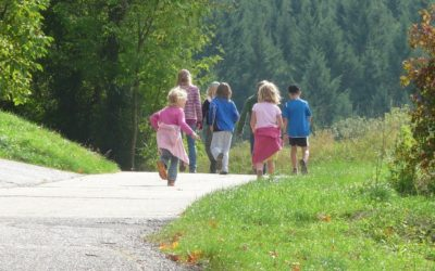 Familienexpedition im Wald