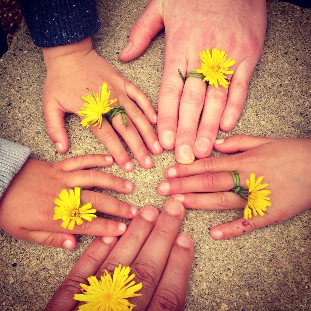 Hände mit Blumenring, Zwei Erwachsenenhände und drei Kinderhände liegen flach auf einem Tisch mit den Fingerspitzen aneinander. Jede Hand hat an einem Finger einen Ring mit einer Löwenzahnblüte.