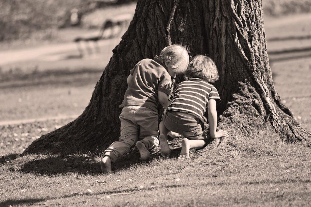Zwei Kinder hocken vor einem Loch im unteren Baumstamm und schauen hinein.