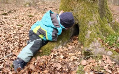Der Kindergarten besucht den Wald